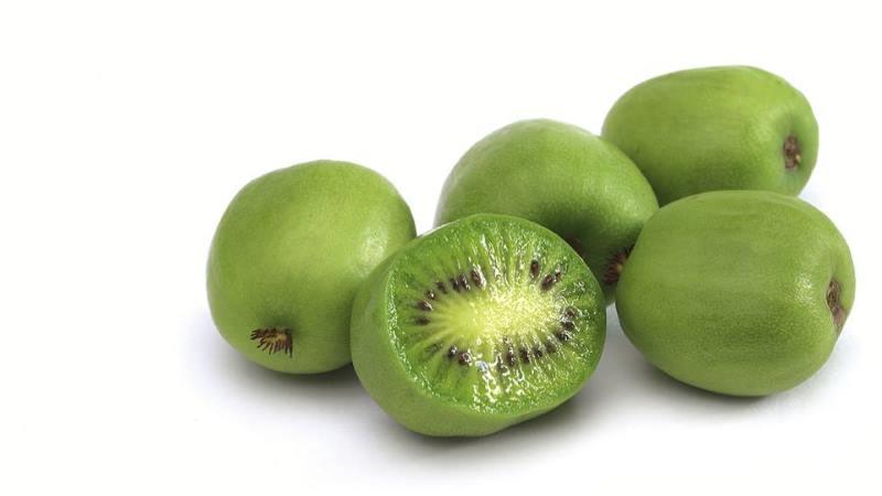 """Résultat de recherche d'images pour """"kiwi nergi"""""""