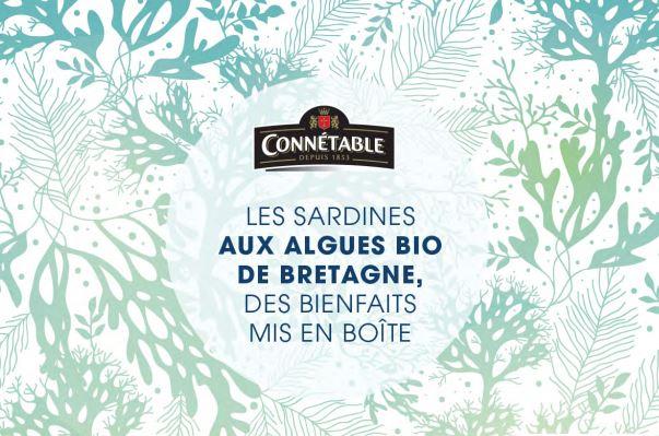 sardinesconnetable