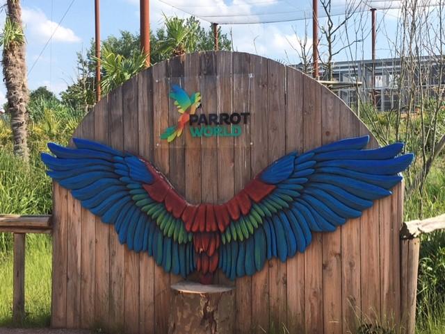 parrotworld01